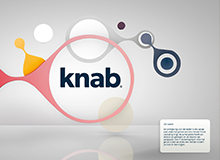 In Progress: Knab bank for yune